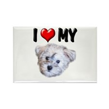 I Love My Schnoodle Rectangle Magnet (100 pack)