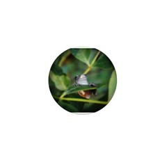 Frog Mini Button (100 pack)