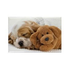 SHIH TZU SLEEPING PUPPY Rectangle Magnet
