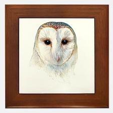 barn owl Framed Tile