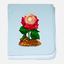 Rose & Universe baby blanket