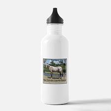 Santana's Store Water Bottle