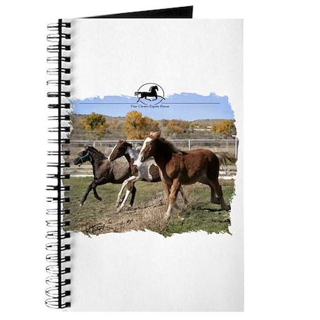 Three Foals Journal