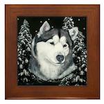 Alaskan Malamute Winter Desig Framed Tile