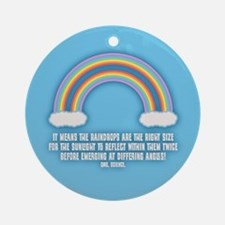 Double Rainbow Meaning Ornament (Round)