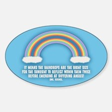 Double Rainbow Meaning Decal