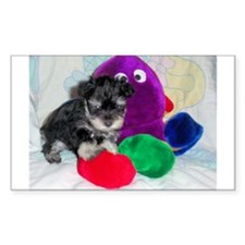 Toy and or Schnauzer Puppy Rectangle Decal