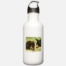 Lancashire Heeler 9R038D-242 Sports Water Bottle