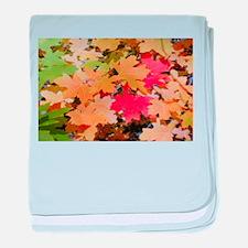 Funny Seasons baby blanket