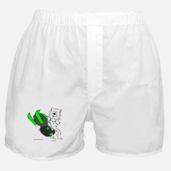 Snowmobile Cat in Color Green Boxer Shorts