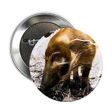 "Pig Profile 1966 2.25"" Button"