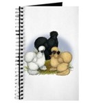 Silkie Chicken Trio Journal