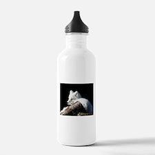 Arctic Fox Water Bottle