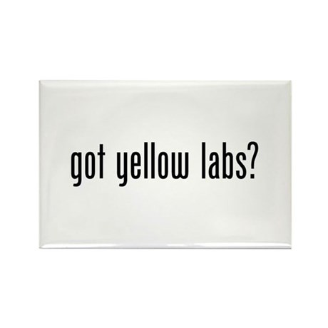Got Yellow Labs Rectangle Magnet