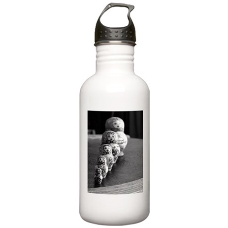 Russian Dolls Stainless Water Bottle 1.0L