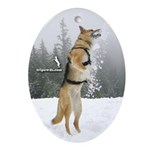 2008 Tripawd Jerry Oval Ornament