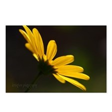 Yellow Simplicity Postcards (Package of 8)