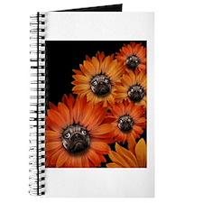 """Orange U Sweet"" Journal"