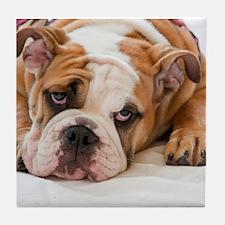 English Bulldog Puppy Tile Coaster