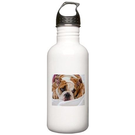 English Bulldog Puppy Stainless Water Bottle 1.0L