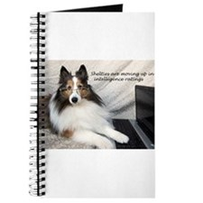 Sheltie Intelligence Journal