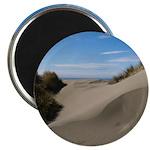 Pacific Dune Scene Magnet