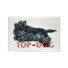 Top Dog Scottish Terrier Rectangle Magnet (10 pack