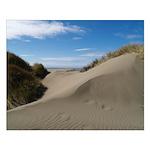 Pacific Dune Scene Small Poster