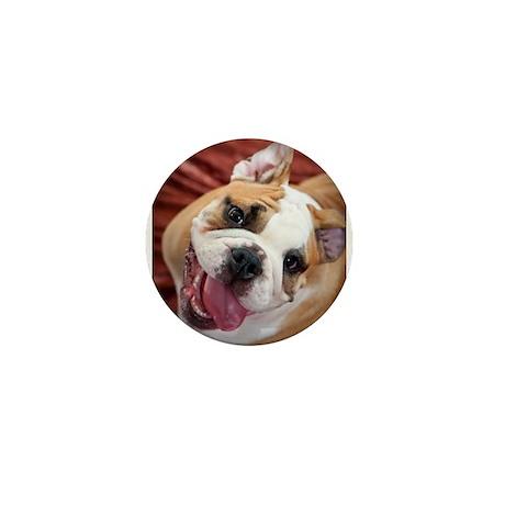 English Bulldog Puppy Mini Button (10 pack)