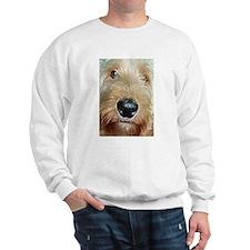 Cool Golden doodles Sweatshirt