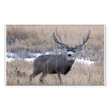 Muley Buck Decal