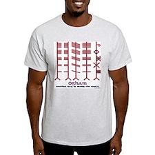 "The Ogham ""alphabet"" Ash Grey T-Shirt"