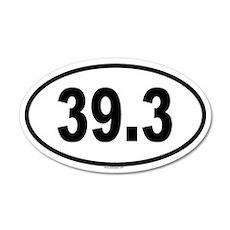 39.3 20x12 Oval Wall Peel