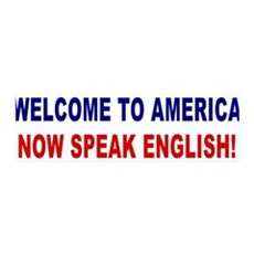 Speak English 36x11 Wall Peel (blue/red)