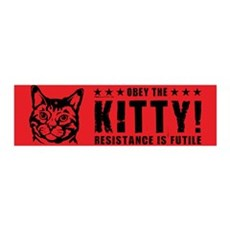 Obey the KITTY! 36x11 Wall Peel