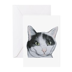 black and white cat Greeting Cards (Pk of 10)
