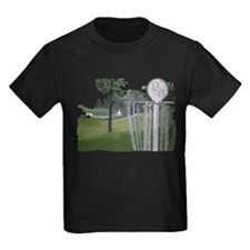 Lapeer Disc Golf T