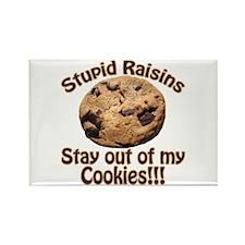 Stupid Raisins Rectangle Magnet