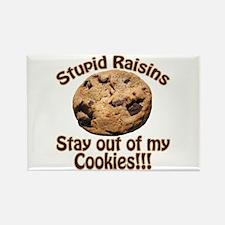Stupid Raisins Rectangle Magnet (10 pack)