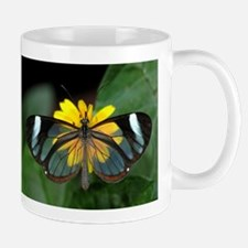 Clearwing Butterfly Mug
