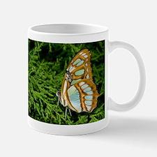 Malachite Butterfly in Evergreen Mug