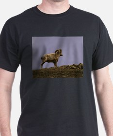Bighorn Sheep T-Shirt