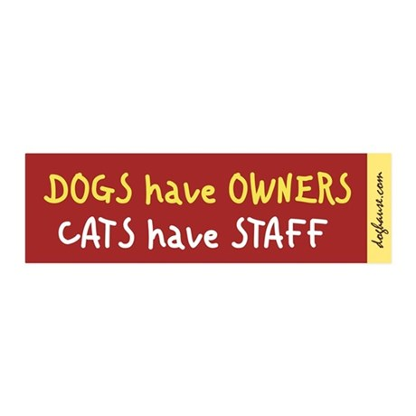 Cats Have Staff 20x6 Wall Peel (Red)