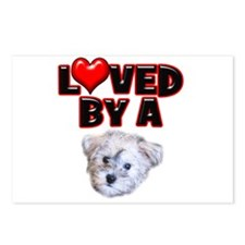 Loved by a Schnoodle Postcards (Package of 8)