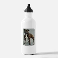 Staffordshire Bull Terrier 9F23-12 Water Bottle