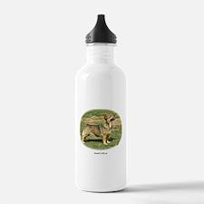 Swedish Vallhund Sports Water Bottle