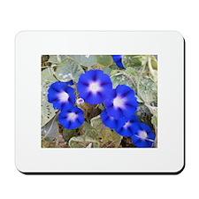 Pennsylvania Dutch Flowers Mousepad