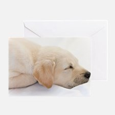 Labrador Puppy Dog Greeting Card