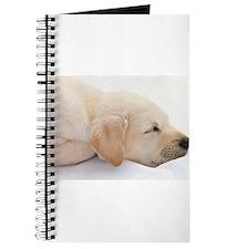 Labrador Puppy Dog Journal