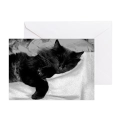 Lazy Day Greeting Cards (Pk of 10)